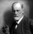 the Freud Conference